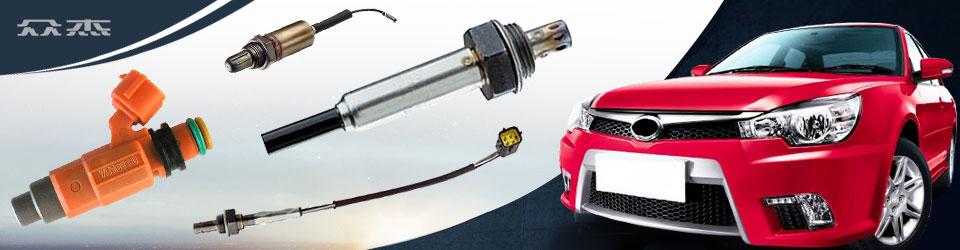 iran market fuel injector